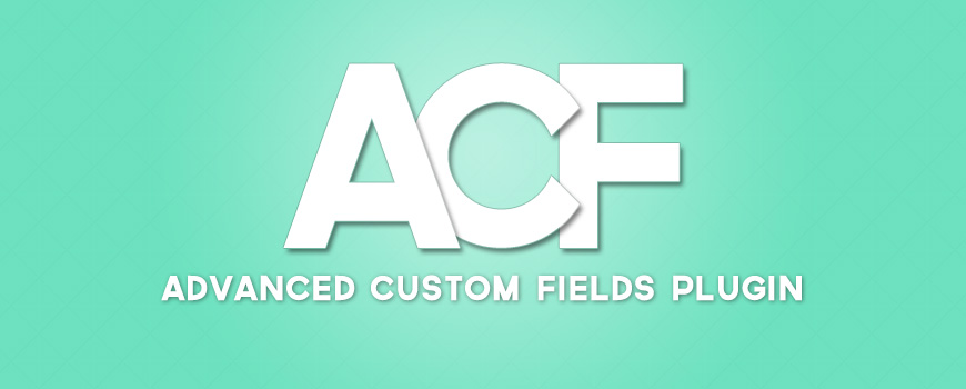 Get default value and placeholder of the ACF field in the WordPress theme